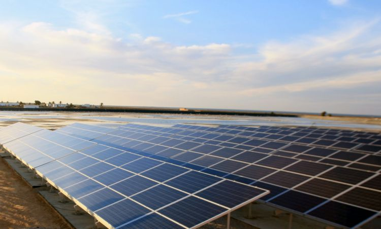 ROUND-UP: Tunisa delays 70MW tender, Greenko to buy Skeiron, Northern Territory approves 25MW